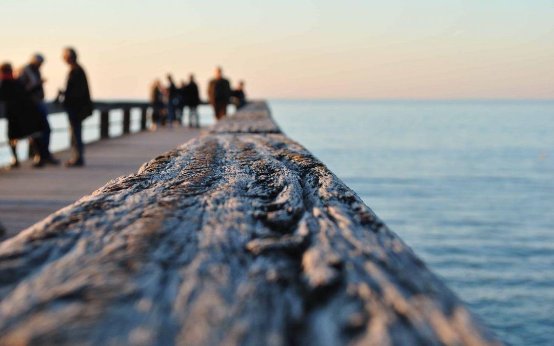 Les associations environnementales suivent de près le développement de l'éolien en mer